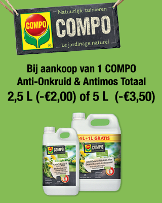 compo-antimos-NL.png