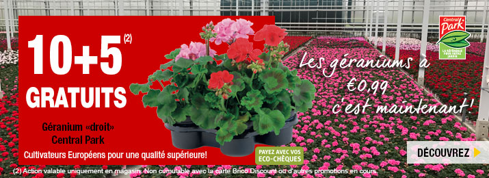 F6_Home-Slider-geraniums-fr.jpg